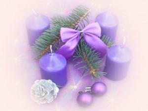 kerst tak paars